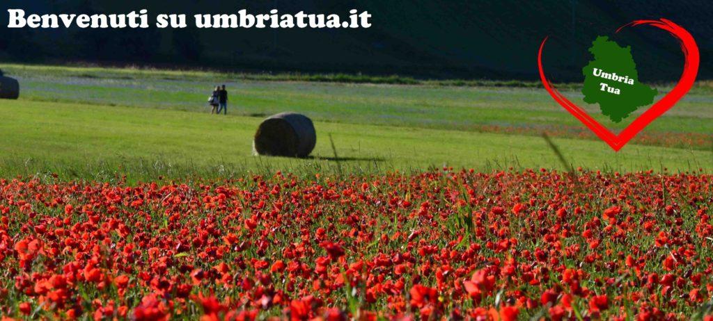 la guida per la tua Umbria da scoprire