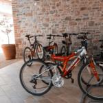 Agriturismo con mountain bike al trasimeno